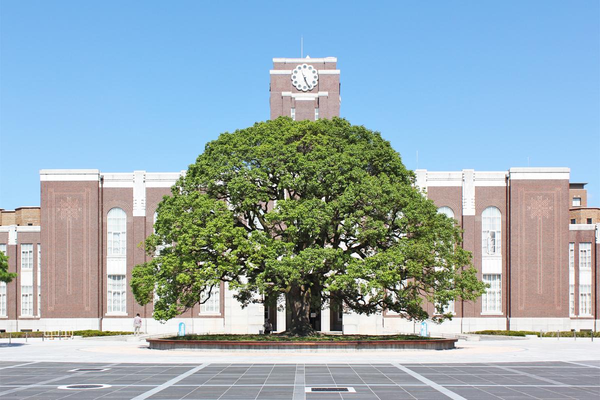 京都大学校考真题