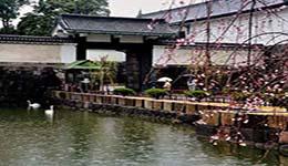 日本留学申请要求是什么
