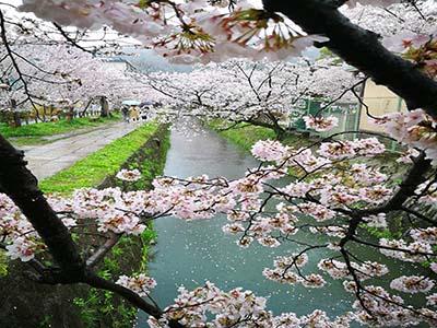 商务日语口语学习「做不到的事不要接受」