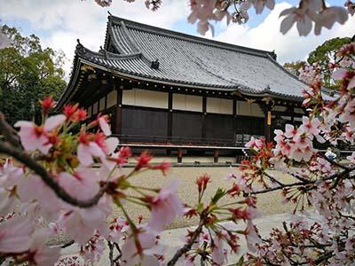 在外国人眼中一些不足的日本礼仪