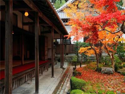 新版中日交流标准日本语初级下册课文(第43课)