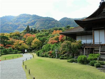 新版中日交流标准日本语初级下册课文(第48课)