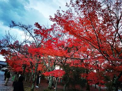 旅游日语:搭乘出租车